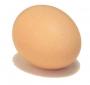 Яйцо 10 шт. С2