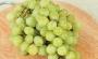 Виноград киш-миш 1 кг