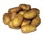 Картофель Россия сетка 2,5 кг